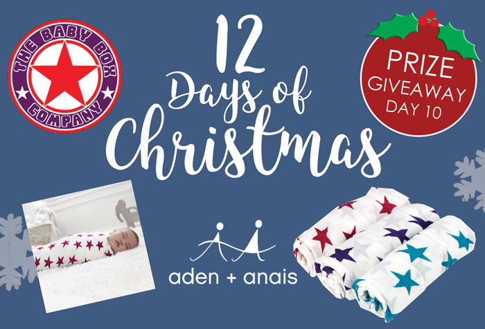 12 days of Christmas Giveaway day 10