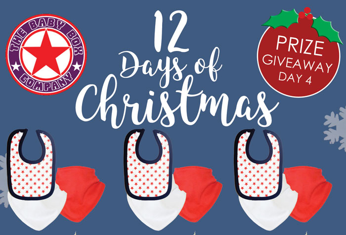 12 days of Christmas giveaway day 4