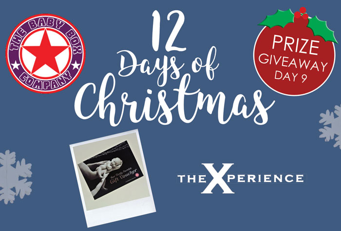 12 days of Christmas giveaway day 9
